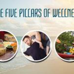 wellness-pillars